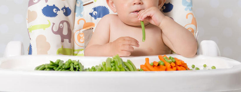 Baby-Led-Weaning-817x312.png